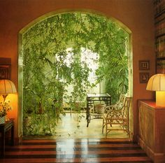 Terence Conran's Decorating with Plants | Susan Conder © 1986 indie | plants