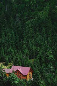 Cabin in the Woods. | Flickr - Photo Sharing!