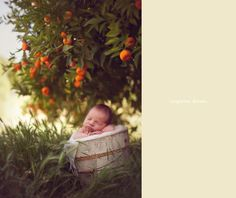 Baby Idea Photos