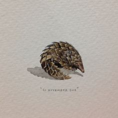 Day 324 : Pangolin! For @makhulu_ and @sydellewillowsmith . 28 x 19 mm…