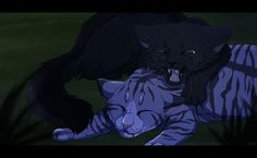 "Moment from the book of Erin Hunter ""Warrior cats"""