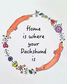 Dachshund Border, Dachshund Quote, Dachshund Print, Dachshund Art, Home is where your Dachshund is by LongDogGeneral on Etsy https://www.etsy.com/listing/264535886/dachshund-border-dachshund-quote