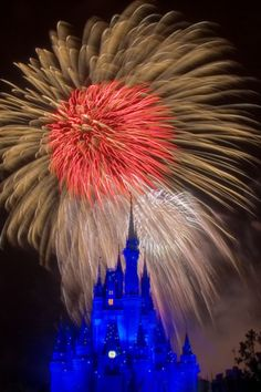 If you're wondering where to stay at Walt Disney World, this post covers the best hotel options for Disney World. Plus pros & cons of off-site v. on-site at Disney. Disney World Discounts, Disney World Hotels, Walt Disney World Vacations, Disney World Resorts, Disney Planning, Disney Tips, Disney Magic, Disney And More, Disney Love