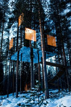Tree Hotel in North Sweden with mirror exterior to blend with nature #buildings #architecture #design #profollica #skycraper