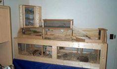 rectangular hedgehog cage