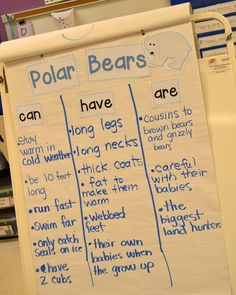 Arctic Animal Interactive Writing: Peek at my Week | Mrs. Wills Kindergarten | Bloglovin'