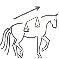 horse topline drawing - Google Search