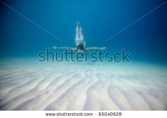 Find Young Woman Freediving Clear Sea stock images in HD and millions of other royalty-free stock photos, illustrations and vectors in the Shutterstock collection. Thousands of new, high-quality pictures added every day. Underwater Photos, Young Women, Diving, Photo Editing, Royalty Free Stock Photos, Sea, Illustration, Pictures, Image