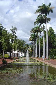 Jardin de l'Etat (Le) - Park and garden - Saint-Denis Mauritius Hotels, Paradise Garden, Saint Denis, Tourist Sites, Historical Monuments, View Map, Waterfall, Saints, Places To Visit