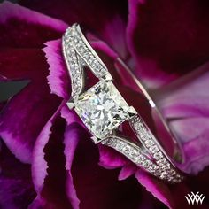 .982ct Princess Cut Diamond set in Katie Pave Diamond Engagement Ring