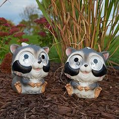 Smart Solar Garden Pal Raccoon Accent Light 2 Pack >>> Be sure to check out this awesome product.