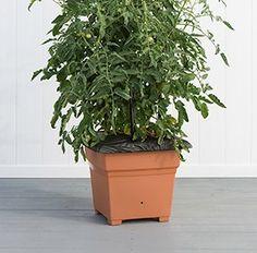 EarthBox® Root & Veg Gardening System - Terracotta - EarthBox® Root & Veg - EarthBox® Systems