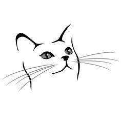 Simple Drawing of a Cat Face I want to do this but in real detail just the eyes and nose