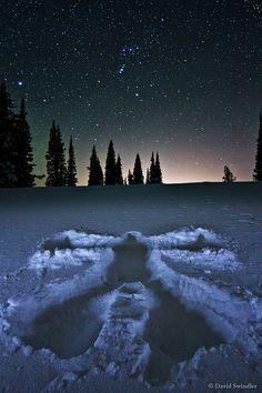 Snow Angel, by .David Swindler