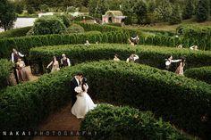 Gorgeous wedding shot at the Morton Arboretum by Nakai Photography.