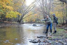 Image Source: http://globegazette.com/news/local/fly-fishing-class-a-hit-with-live-bait-users/article_76dcf94f-414e-596b-a7c9-64aa24dd21ab.html