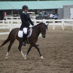 Hayward sponsored rider Paula Fedeyko is wearing our machine washable black Dressage jacket with 1/2 collar teal velvet. The jacket has 4 front silver buttons and 2 smaller back buttons with matching teal lining.