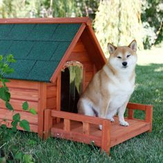 Ware Ultimate A-Frame Dog House with Optional Patio & Door - Dog Houses at Hayneedle