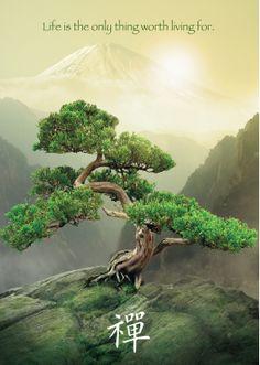 Ravensburger - Tree of Life