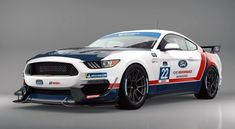 The high anticipation of Ford Performance development driver Hailie Deegan's debut in IMSA's Michelin Pilot Challenge four-hour race next Friday, Jan at Daytona International Speedway just reached a fever pitch. Daytona International Speedway, Paint Schemes, Drag Racing, Ford Mustang, Nascar, Race Cars, Challenges, Vehicles, Pitch