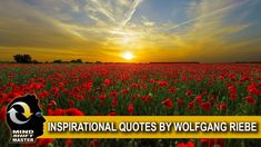 Wolfgang Riebe Original Quotations Part 1