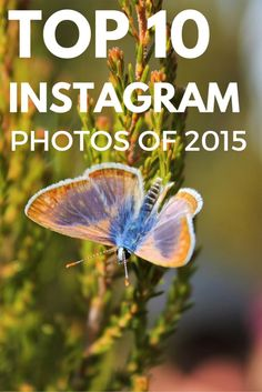 Top Instagram Photos of 2015