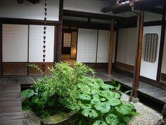 Delightful small courtyard of a Japanese Merchant's house, Tokushima-shi, Japan.  Photo by Yurek Kulski.