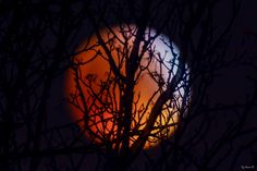 Photos, Blood Moon, Night, Photography, Stone, Pictures
