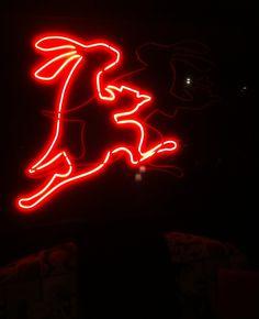 Alice in Wonderland - red bunny - neon Cool Neon Signs, Neon Sign Art, Neon Jungle, Alice In Wonderland, Wonderland Party, Neon Nights, Light Painting, Neon Lighting, Neon Colors