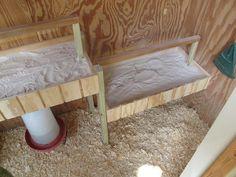 Roost Bars w/Sand (to scoop poop)