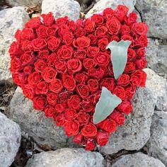 Sagt sie Ja !#Wedding #Hochzeit #heiratsantrag #herz #heart #Blumen #flower #flowers #roten #rosen