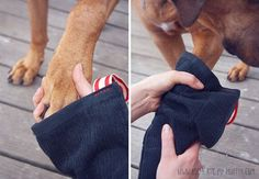 "A DIY for a ""Mud Puppy Mitten"" a muddy paw cleaning towel! This will definitely come in handy!"