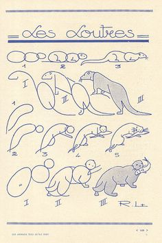 les animaux 63 by pilllpat (agence eureka), via Flickr