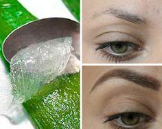 Gel de Babosa (ou Aloe Vera) para fazer a sobrancelha crescer mais rápido e sem falhas