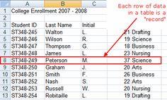 Microsoft Excel Step by Step Database Tutorial