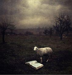 artistic surreal photomanipulation by sarolta ban 33