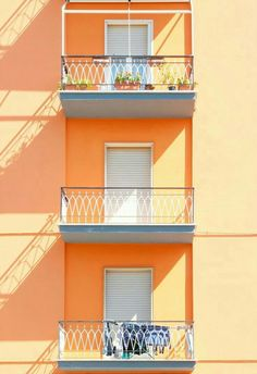 Read orange aura from the story that aesthetic crack by stoneydanes (stoney) with 973 reads. Orange Aesthetic, Rainbow Aesthetic, Aesthetic Colors, Aesthetic Collage, Aesthetic Pictures, Aesthetic Pastel, Aesthetic Grunge, Aesthetic Vintage, Orange Pastel