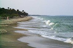 Destination Edisto Beach South Carolina A Great Place To Find Shells Our