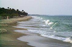 Edisto, the beach
