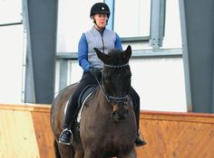 The Importance of Shoulder-in When Training the Dressage Horse By Sarah Geikie - See more at: http://dressagetoday.com/article/alpha-omega-29909?utm_source=DressageTodayNL&utm_medium=email&utm_campaign=Newsletter#sthash.vU0piOsw.dpuf