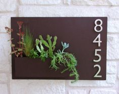 Welcome Home. This modern wall planter & address plaque adds flair and style to the facade of your home with sleek aluminum street numbers. Looks particularly great when planted with colorful succulents!    This planter is made to order in Austin, TX and is constructed of 14 gauge steel and powder-coated pure white. The paint finish is sleek, glossy, and will stand up to the elements. The planter floats about a quarter inch off the wall and is held with a handmade metal cleat (included) for…