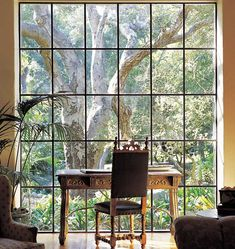 Love the steel window and also that it is floor to ceiling.  Also love that old oak tree.  Gorgeous view from a beautiful window and interior.  Lovely!  ~TE