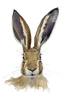 Hare Portrait IX £30.00 Rabbit Drawing, Rabbit Art, Jack Rabbit, Watercolor Print, Watercolor Paintings, Watercolor Ideas, Hare Pictures, Hare Images, Hare Illustration