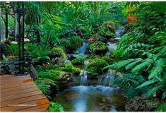 ♥ Homedeedeeforyou - เปลี่ยนสวนอังกฤษเก่าๆ ให้เป็นสวนป่าที่ชุ่มฉ่ำ