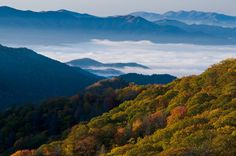 Great Smoky Mountains National Park - Bing Images