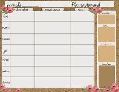 plan saptamanal de organizare a casei si a activitatilor