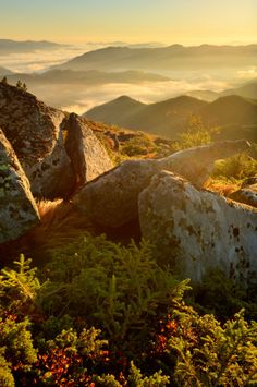 Bright morning in the Carpathian Mountains, Ukraine.
