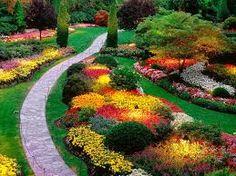 Resultado de imagem para tipos de jardins