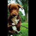 adorableeee!!<3