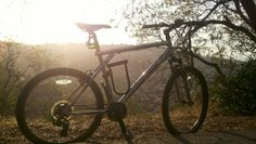 My 1 horsepower ride, on the top of Montecito Heights (Debs Park, peanut Lake area) My Backyard!